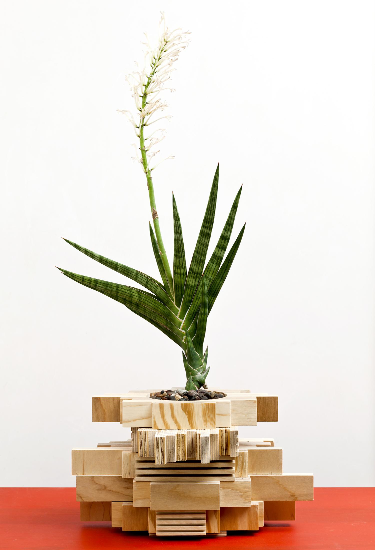 planter 12.jpg