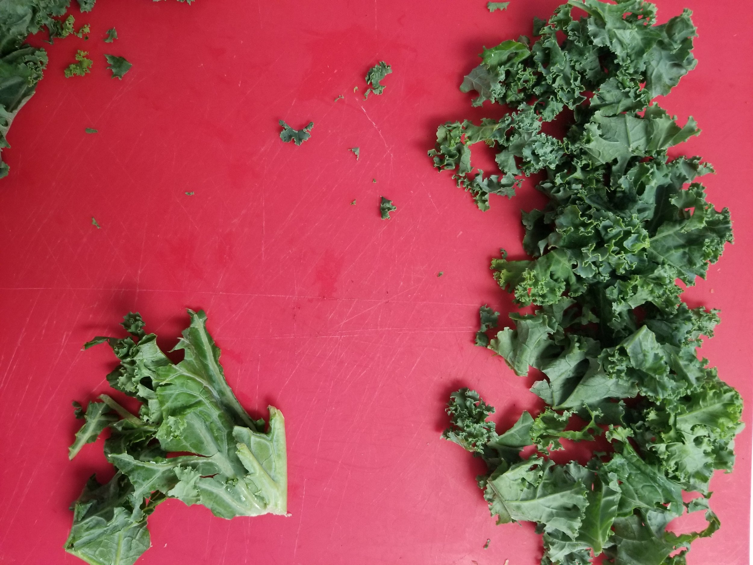 Yes, You Can Cook - Kale.jpg