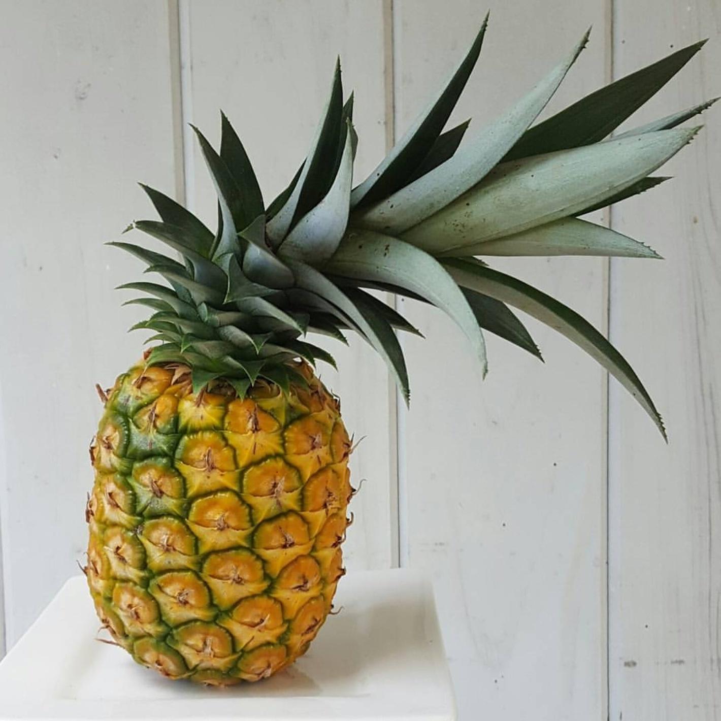 September At A Glance - Pineapple.jpg