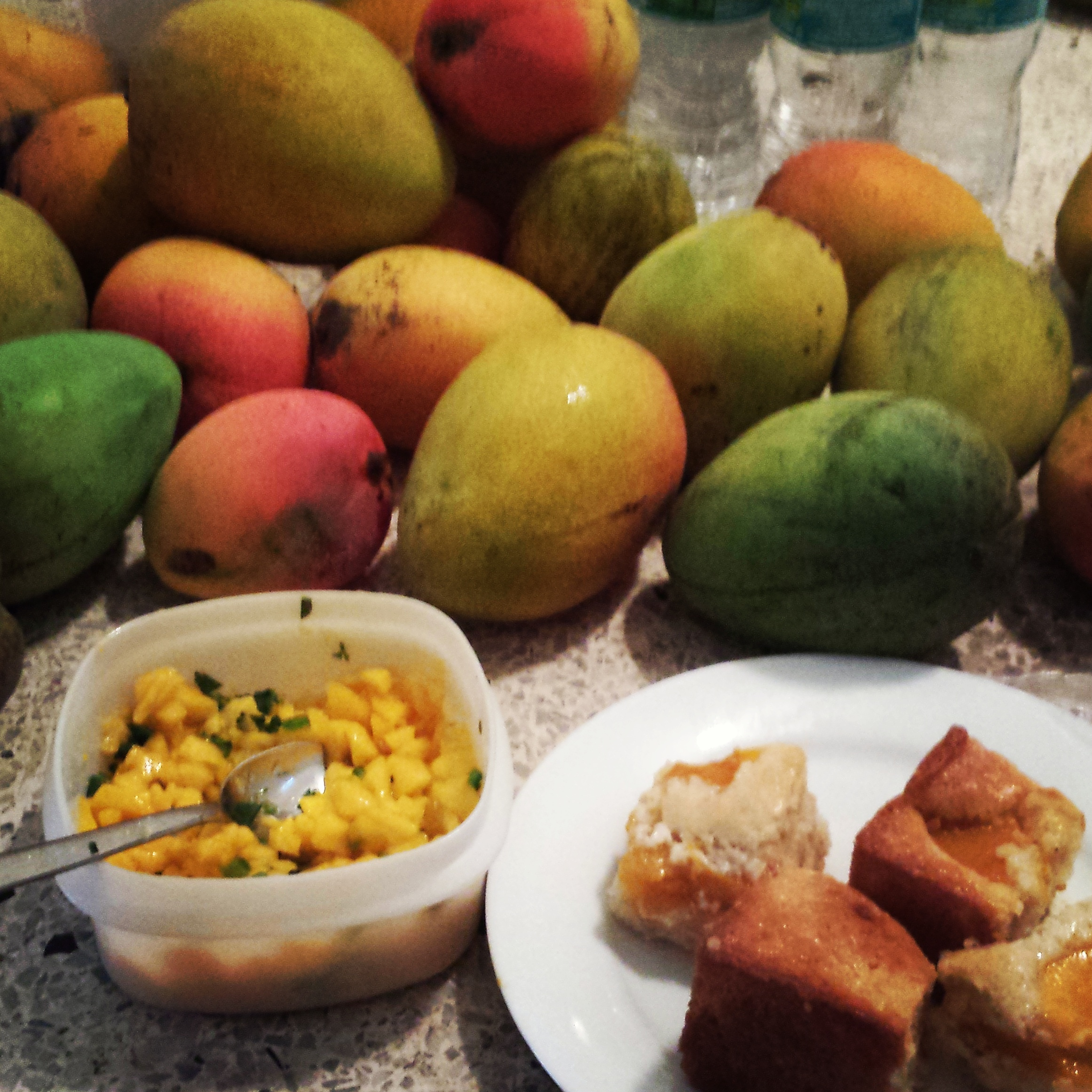 My Week Off - All things mango.jpg