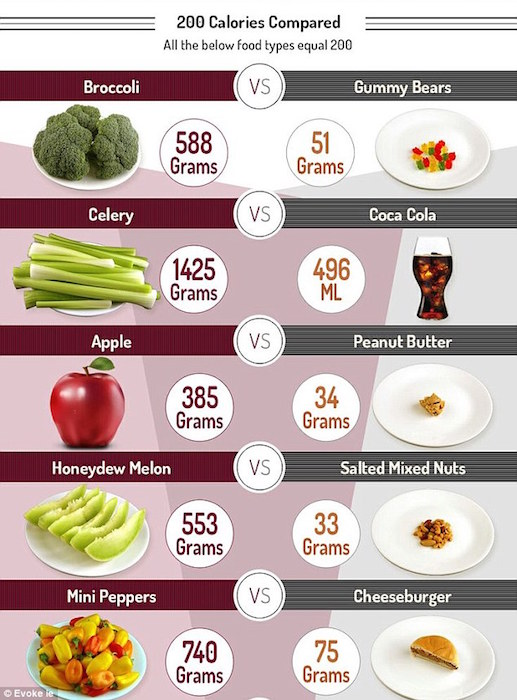 A Calorie Is A Calorie - Or Is It - Calories compared.jpg