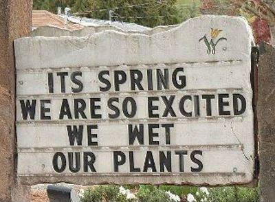 Growth & Renewal - Spring.jpg
