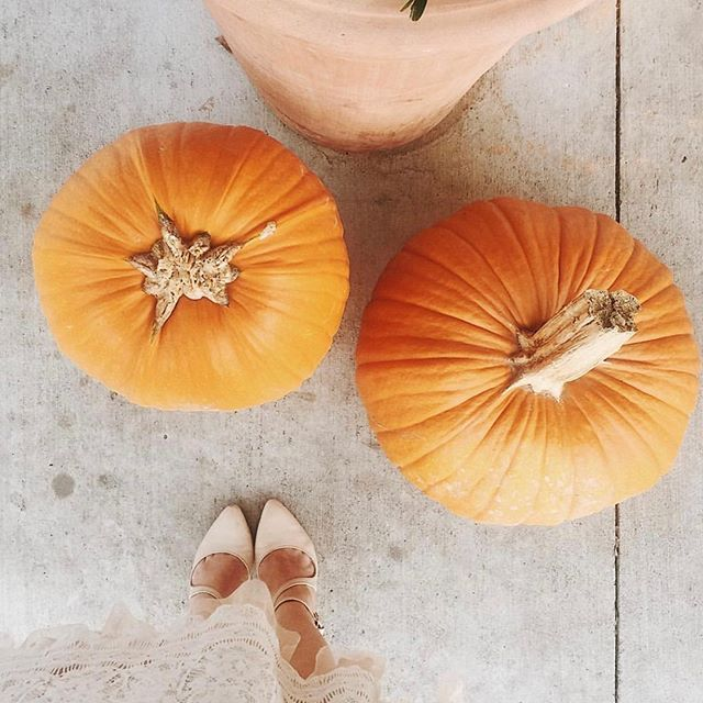 Because it just doesn't feel like October without a pumpkin pic right?!