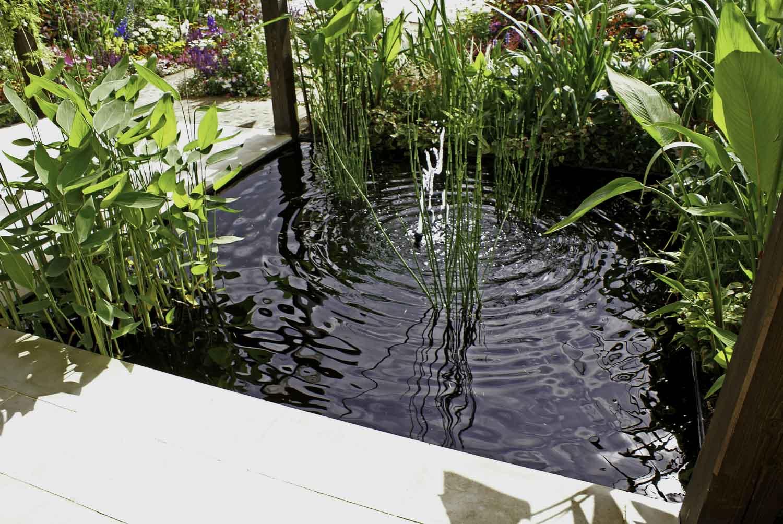 ©Jack Dunckley Landscape Design Garden Design RHS Hampton Court Palace Flower Show 2010 Birchfield Garden-8.jpg