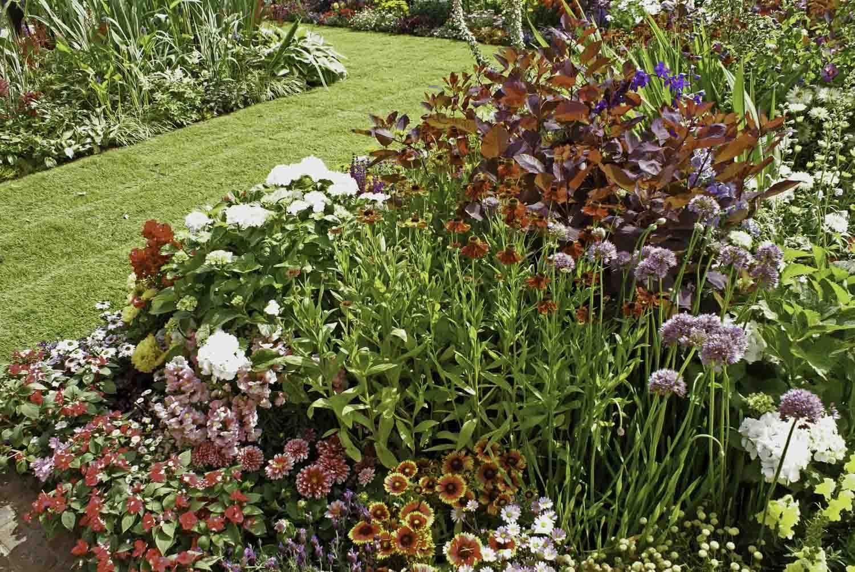 ©Jack Dunckley Landscape Design Garden Design RHS Hampton Court Palace Flower Show 2010 Birchfield Garden-7.jpg