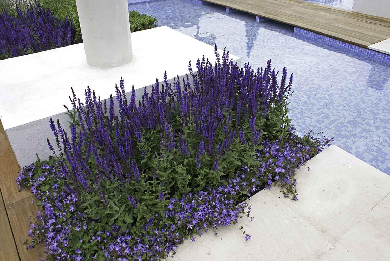 ©Jack Dunckley Landscape Design Garden Design RHS Hampton Court Palace Flower Show 2012 The Italian Job-6.jpg
