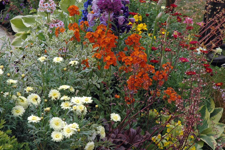 ©Jack Dunckley Award Winning Landscape Designer RHS Flower Show 2009 Malvern Spring-3.jpg