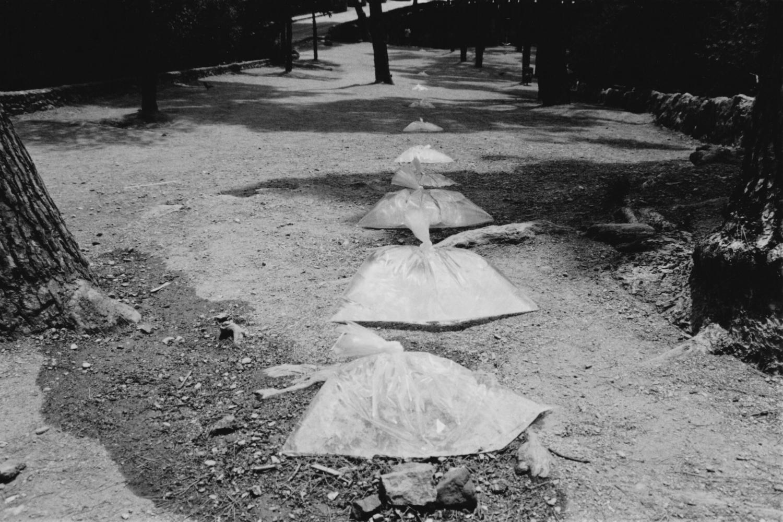 Parque Guell 2 © Olga de Soto - 1.jpg