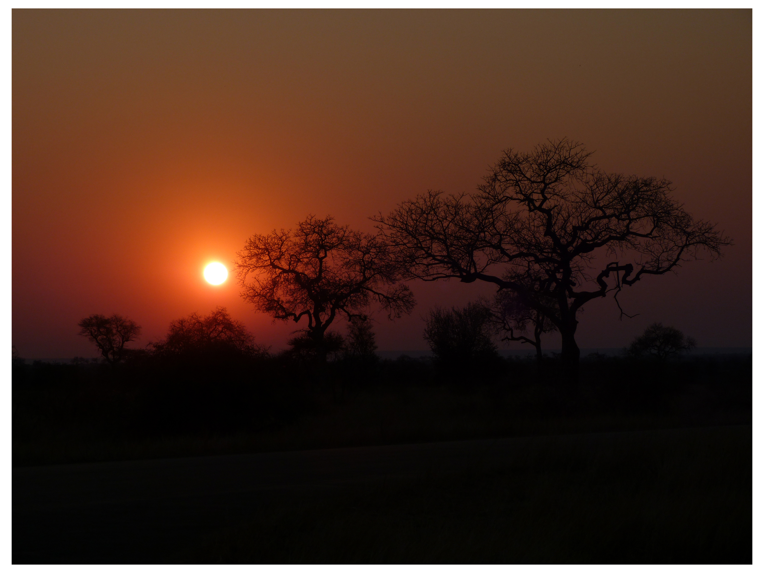 Near Satara, Kruger National Park