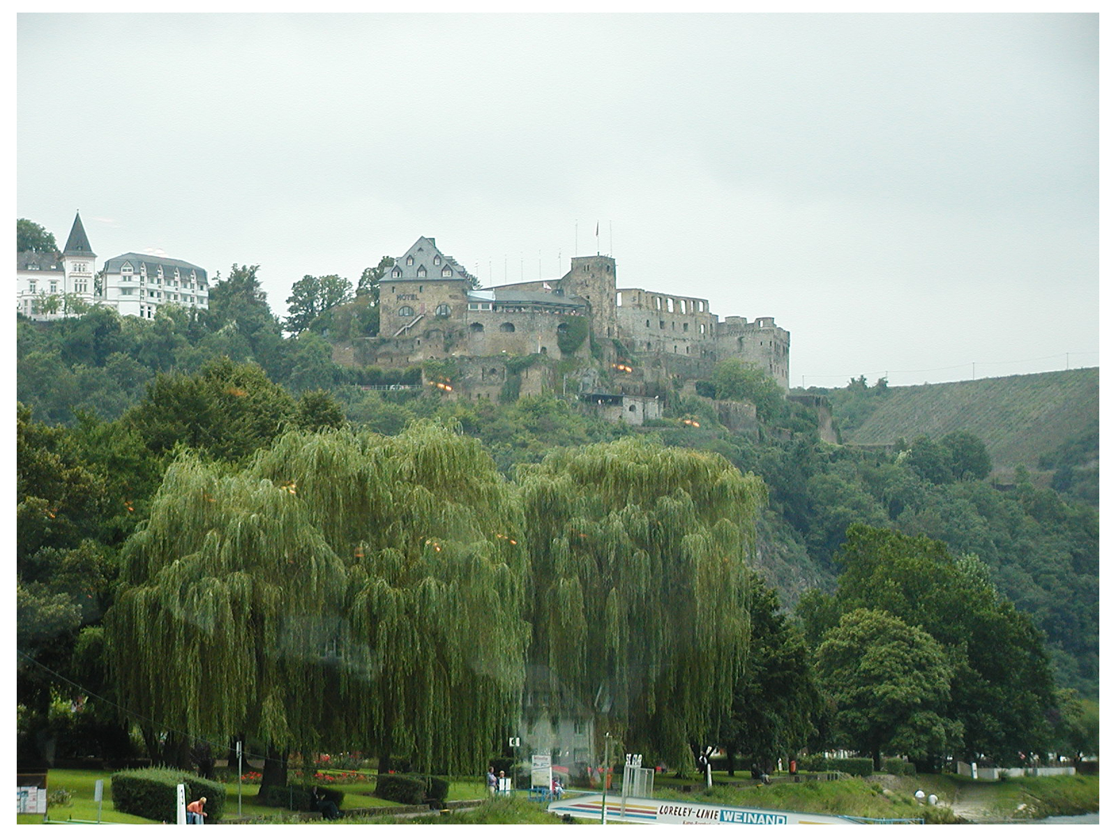 Rhinefels Castle