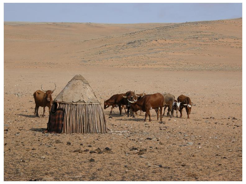 Hut in Serra Cafema, Namibia