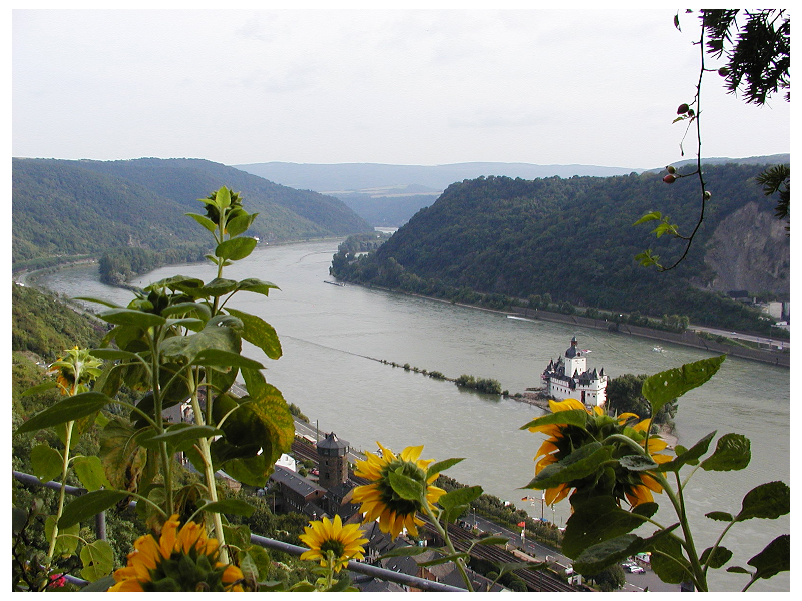 View from Schloss Rheinfels, Germany