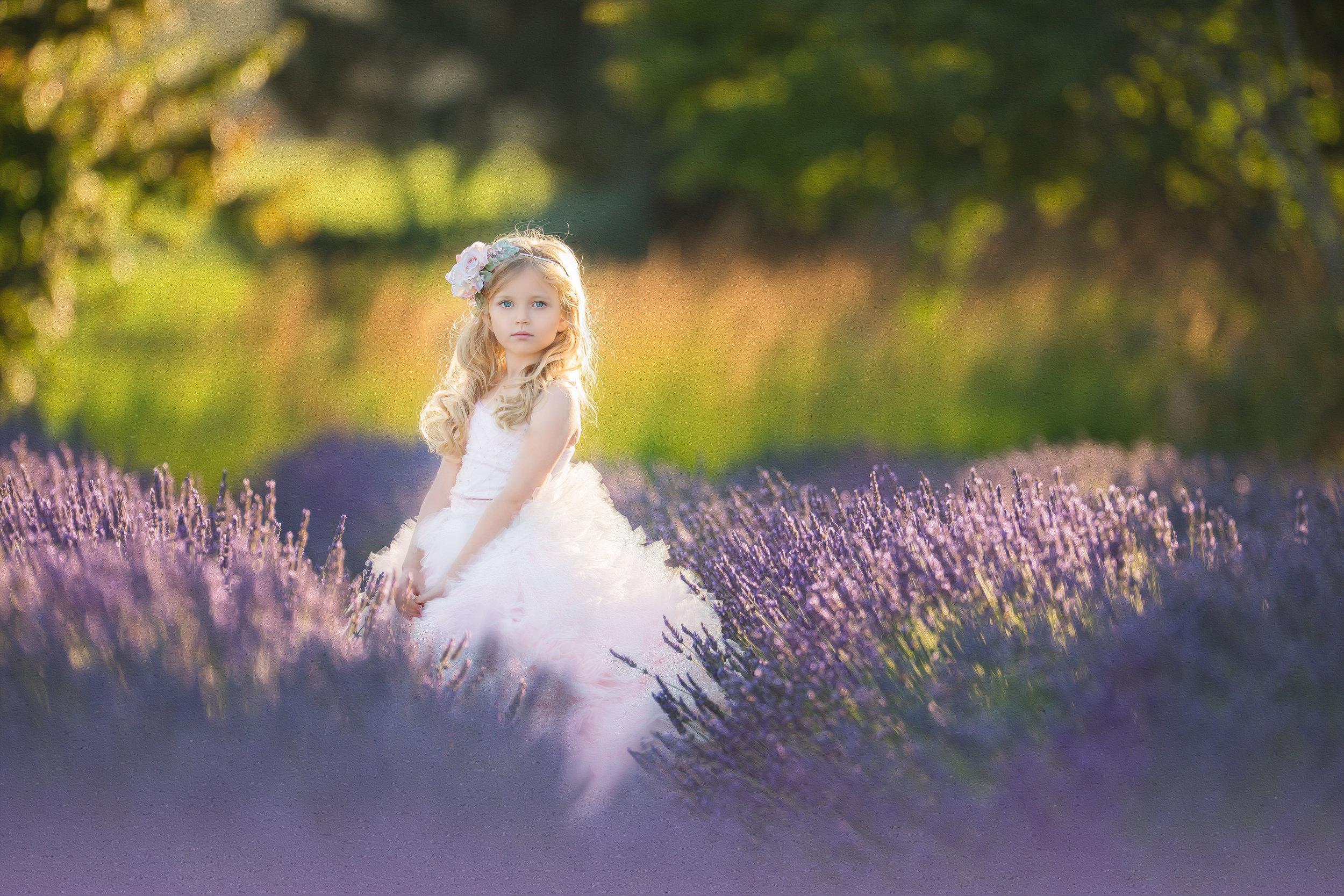 portrait in lavender filed