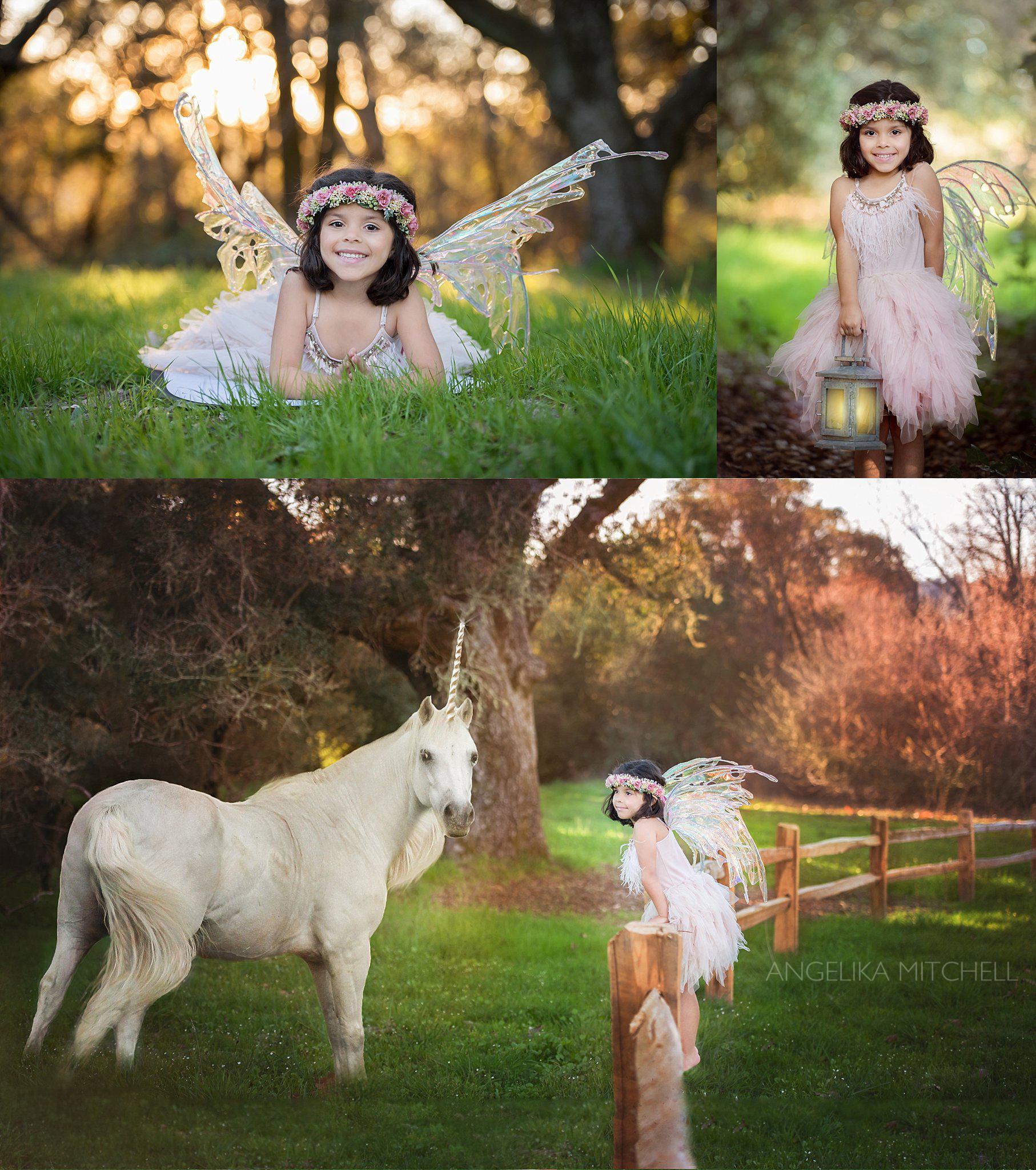 Fairy Photo- Sonoma County Child Photographer Angelika Mitchell
