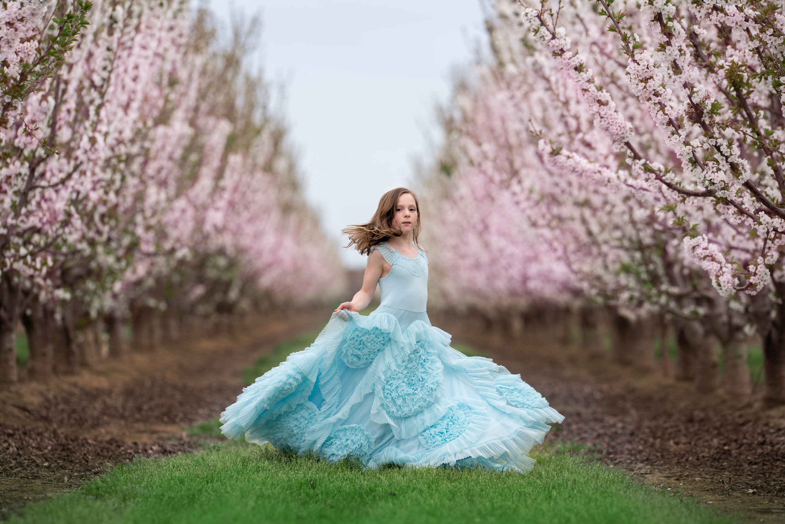 Davis Blossoms_-7.jpg