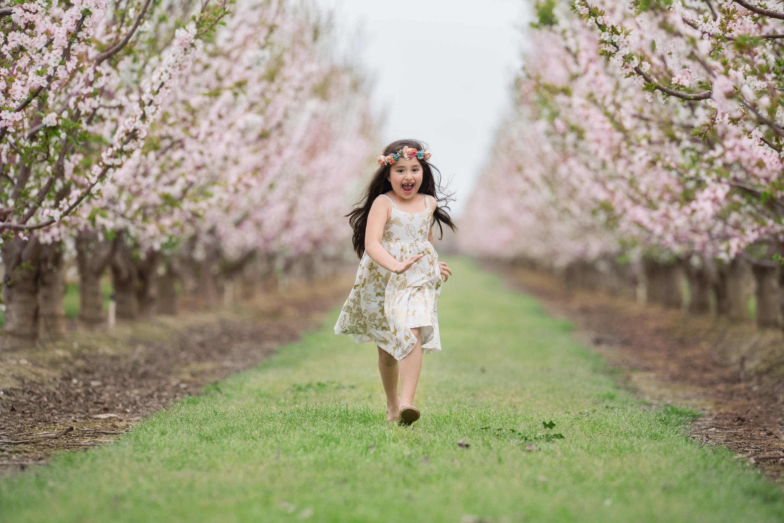 Khaleda Blossoms-3.jpg