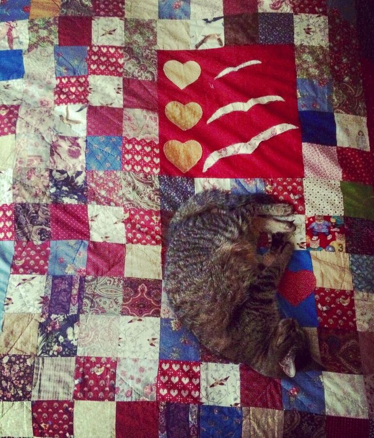 Quilt Model Willicus - Gift Fox Quilts July 2016.jpeg