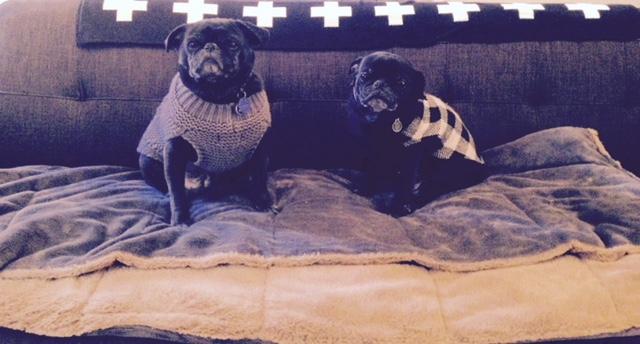 Daisy and Elly
