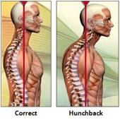 northcote chiropractor