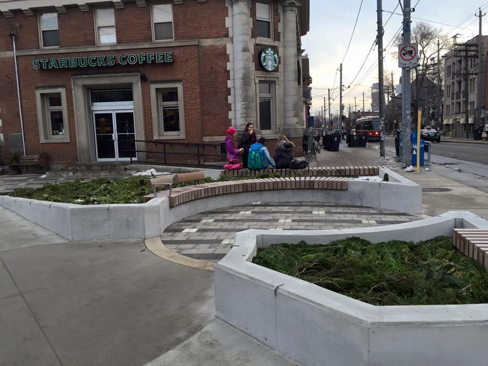 peace_garden_wintergreenery.jpg