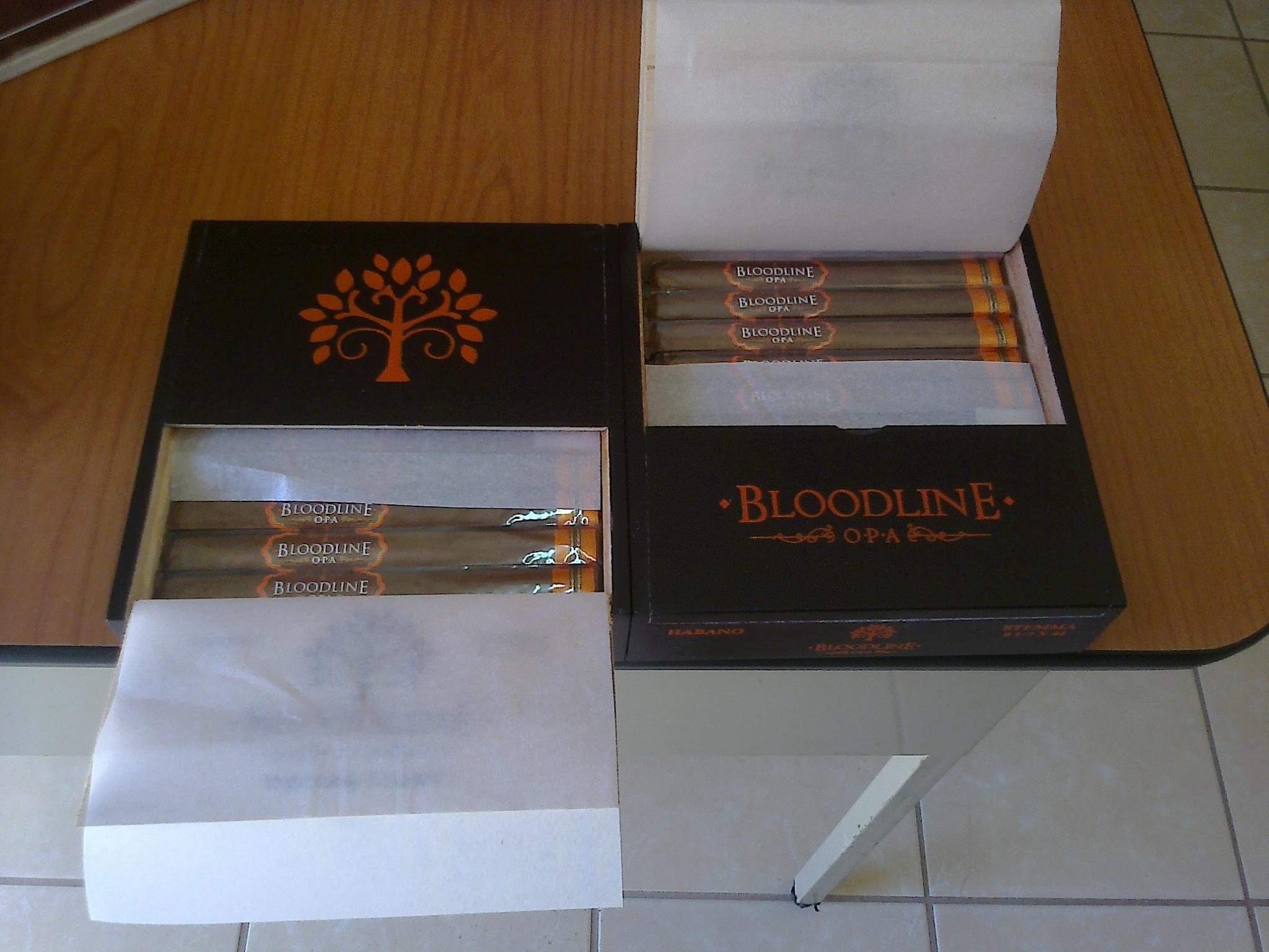 bloodline orange.jpg