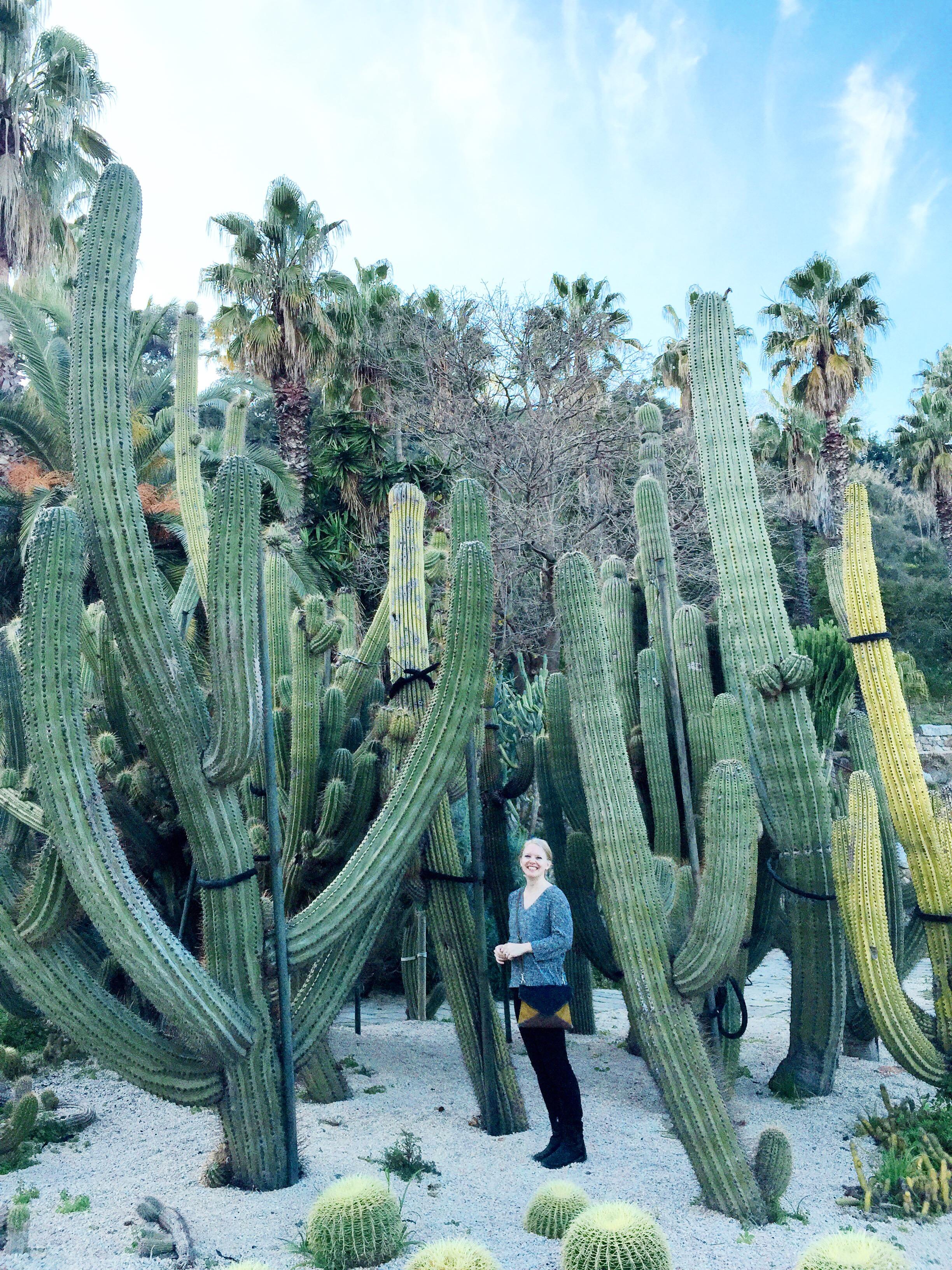 Jardins de Mossèn Costa i Llobera - Barcelona, Spain