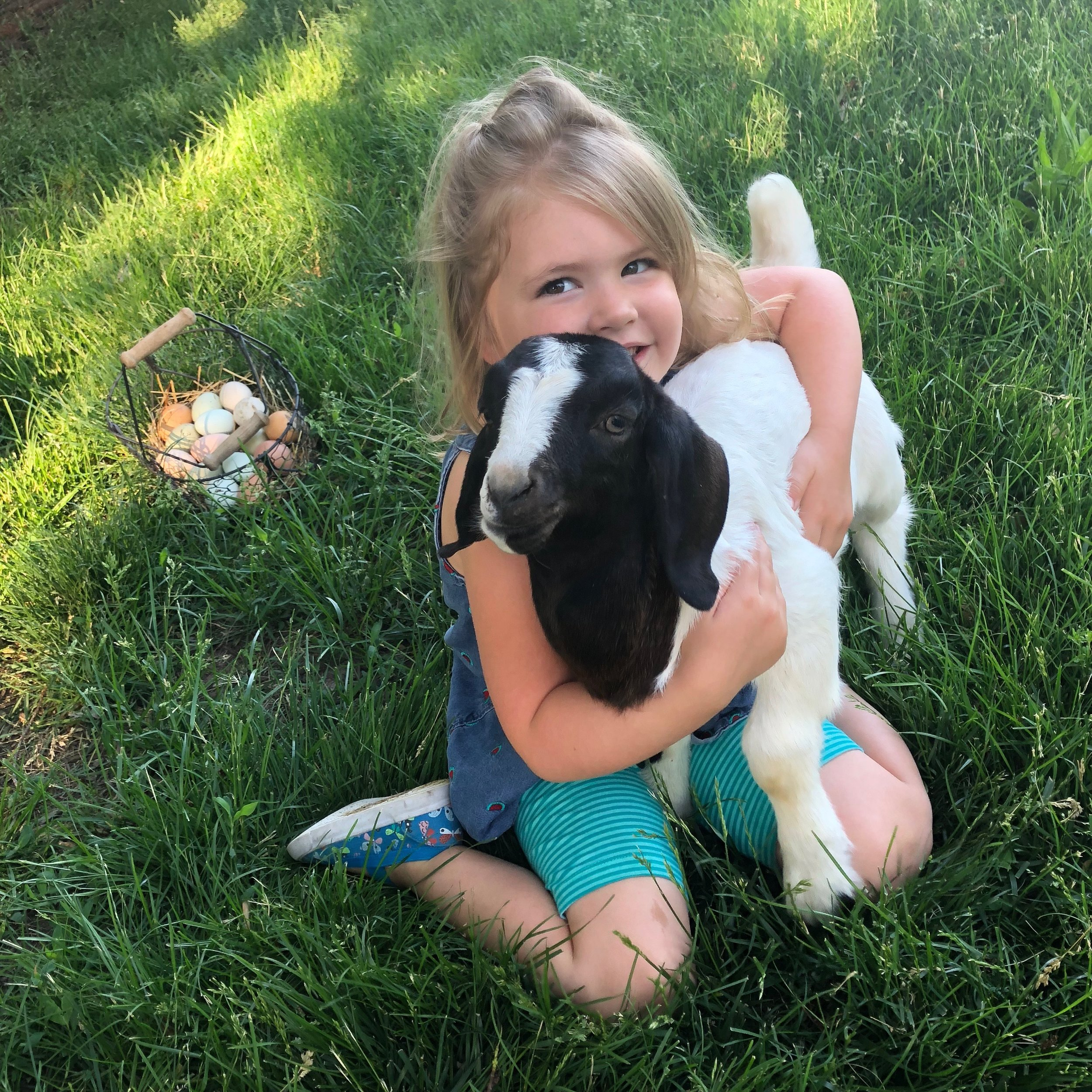 Our main helper, Maisy, and her favorite baby goat, Mancha.