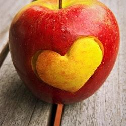 Probiotic, Probiotic-Rich Foods, yogurt, kombucha, kimchi, Benefits Of Probiotics What Are Probiotics, gut health, bacteria, improves digestion ,bowel movements