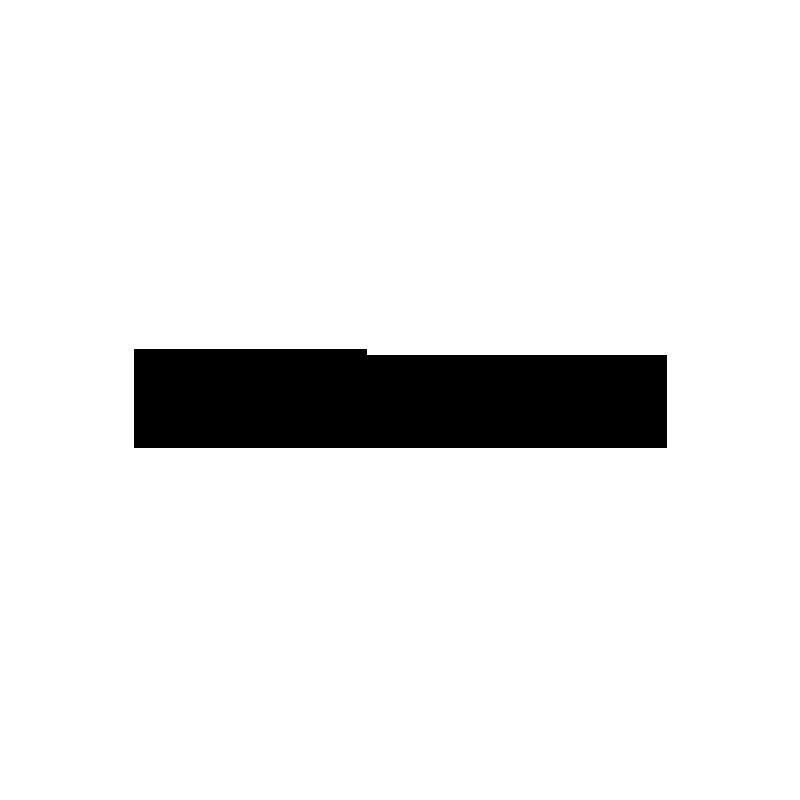 SDVoyagerlarge-2.png
