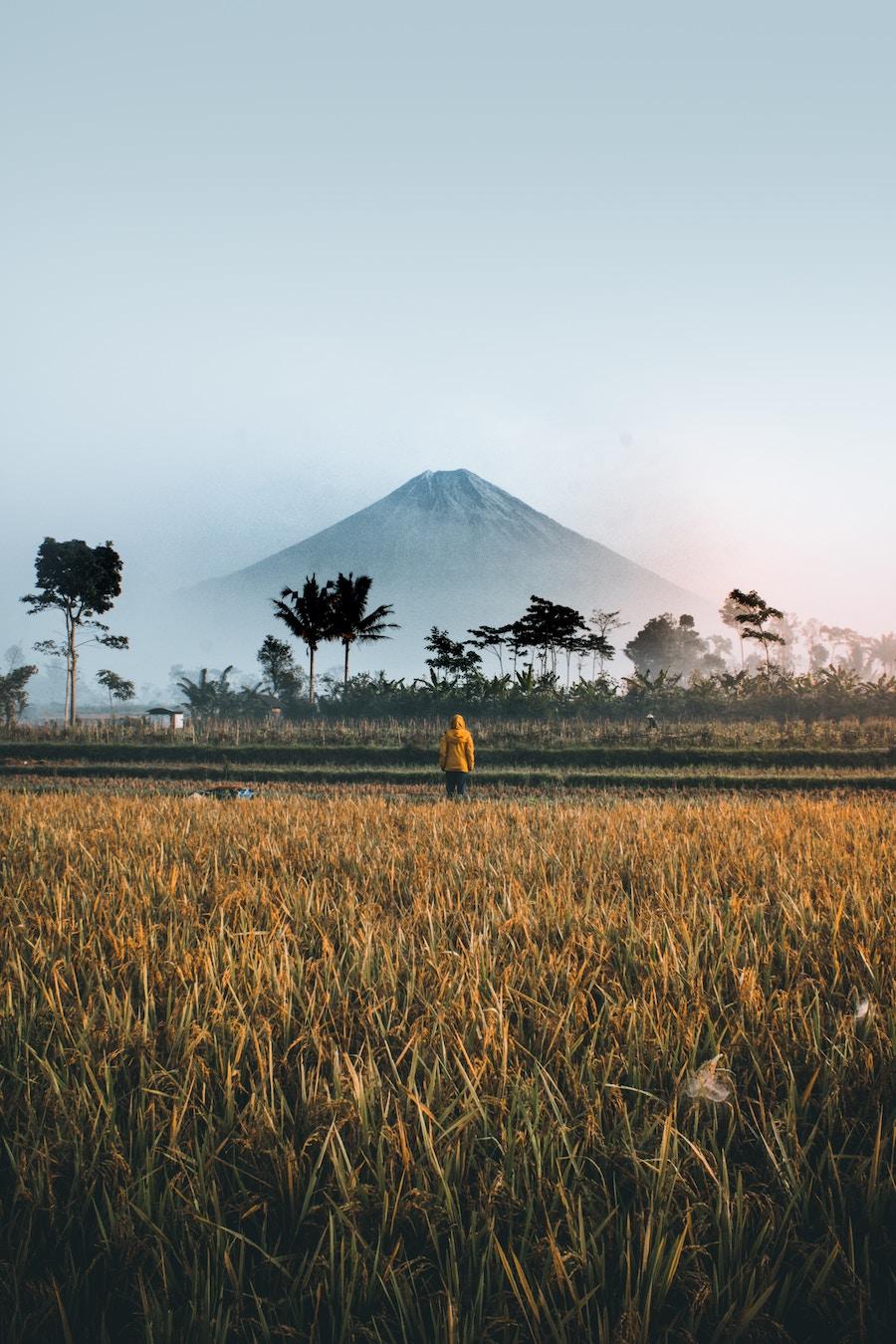 Oro Oro Ombo, Indonesia      Photo by  Ifan Bima
