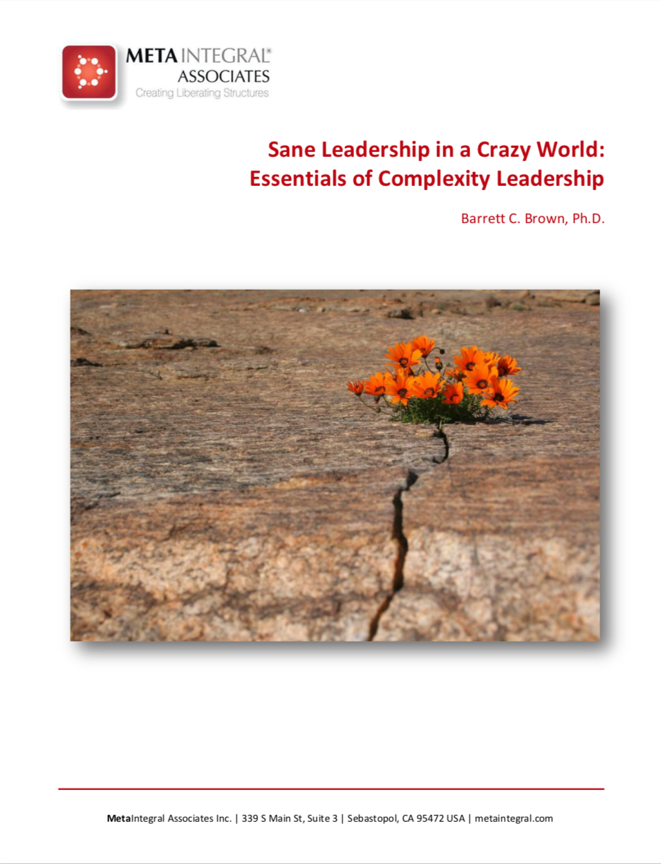 sane leadership in a crazy world: Essentials of complexity leadership - A cheat-sheet about complexity for leaders and change agents searching for less zaniness and greater clarity about how to navigate rapid change, complex environments and the need for constant creativity.