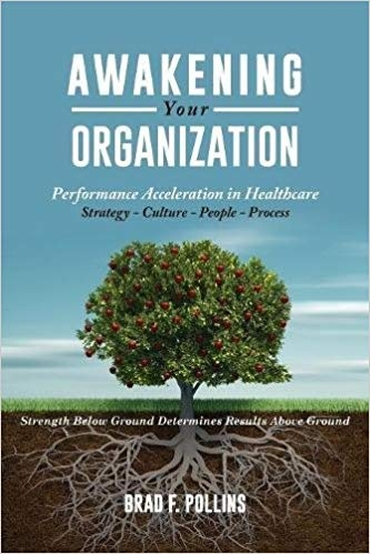 Book_Awakening-Your-Organization.jpg