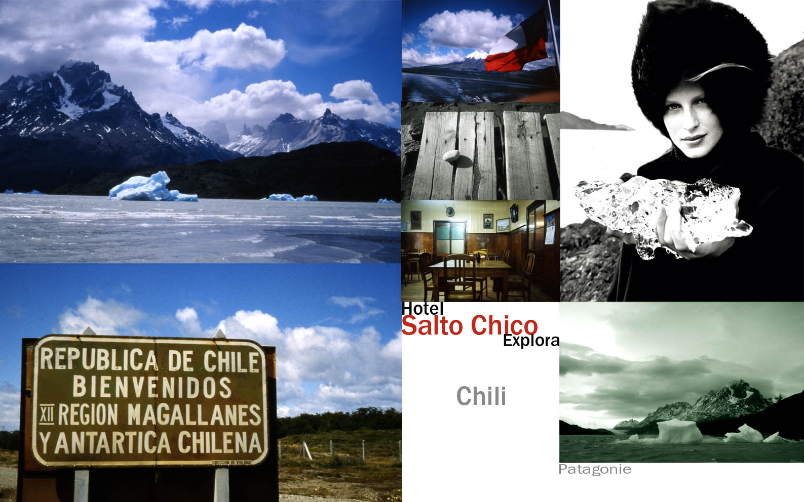 Sato Chico Chili2.jpg