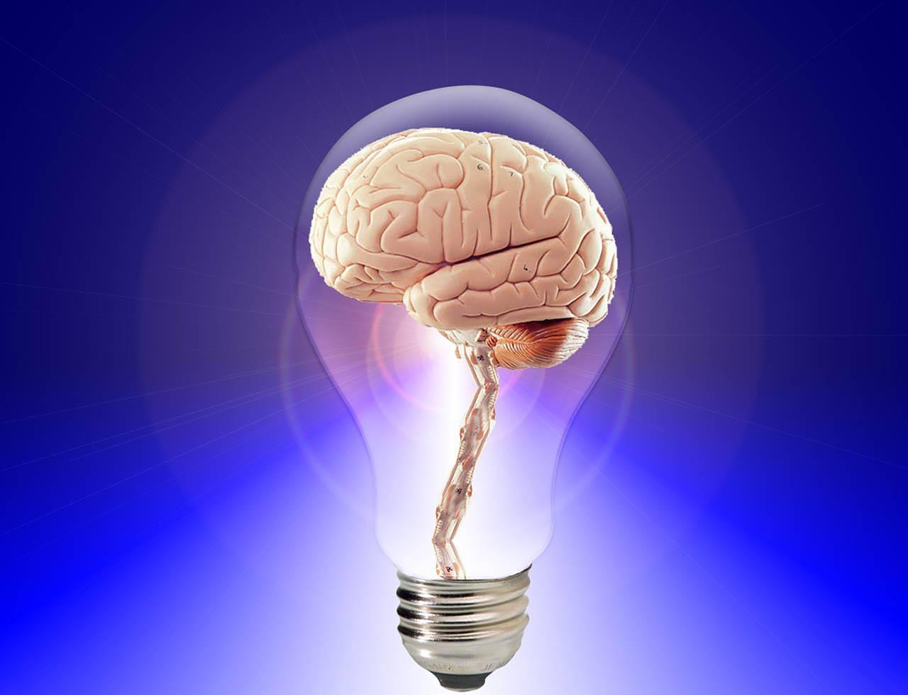 brain light.jpg