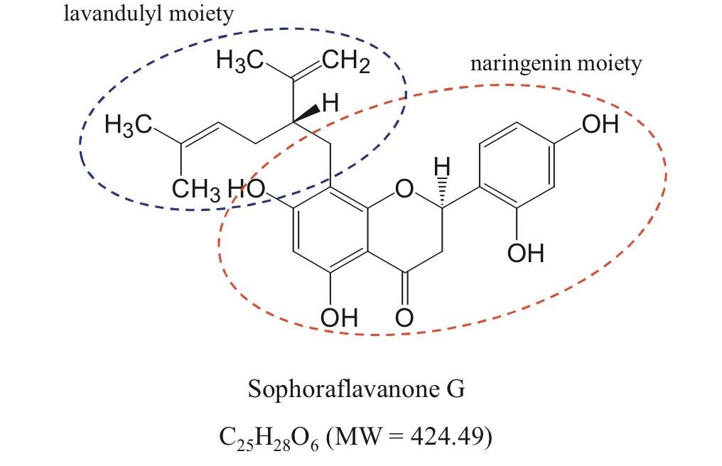 SG contains both  lavandulyl  and  naringenin  moieties. https://www.ncbi.nlm.nih.gov/pubmed/23962443