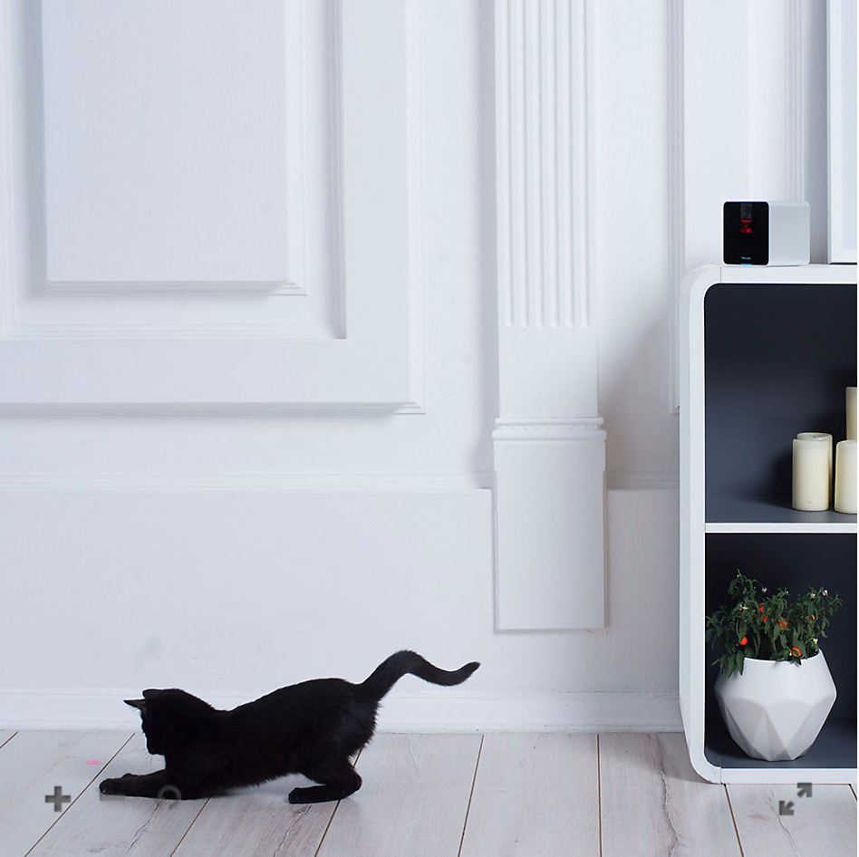 Petcube Interactive Wi-Fi Pet Camera - Matte Silver