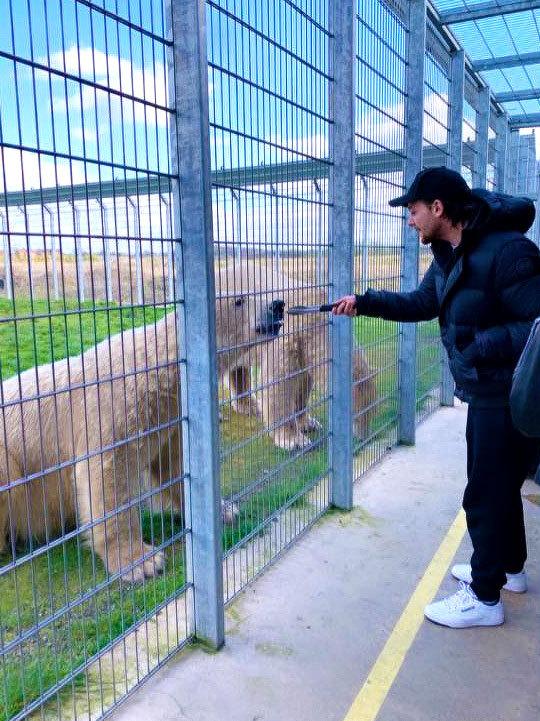 zoo louis 2.jpg