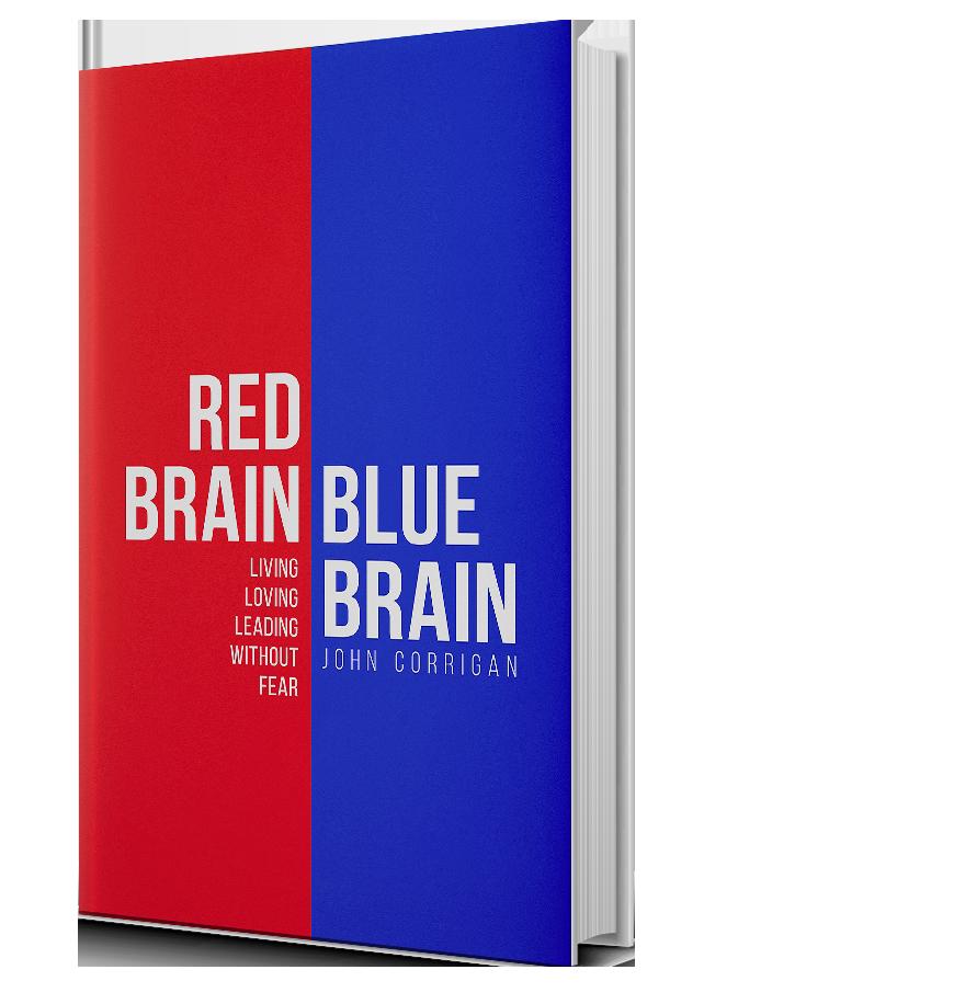 book-red-brain-blue-brain.png