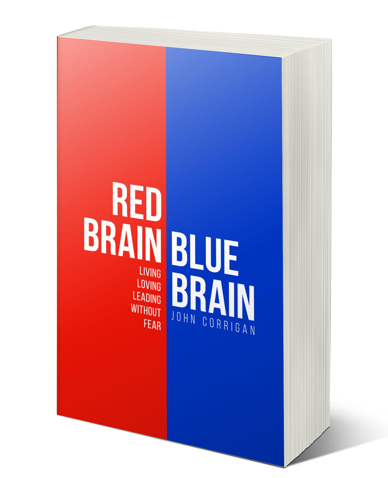 Red Brain Blue Brain Mock up.png