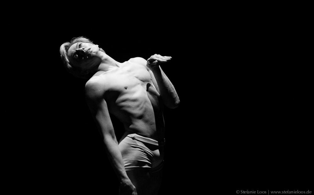 Malakhov tanzt den sterbenden Schwan
