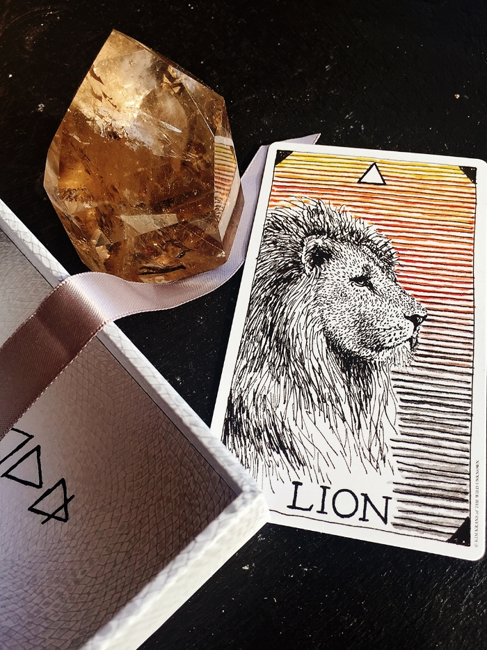 The Lion card from The Wild Unknown Animal Spirit Deck.