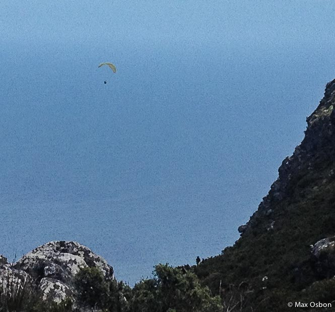 You see these paragliders everywhere.