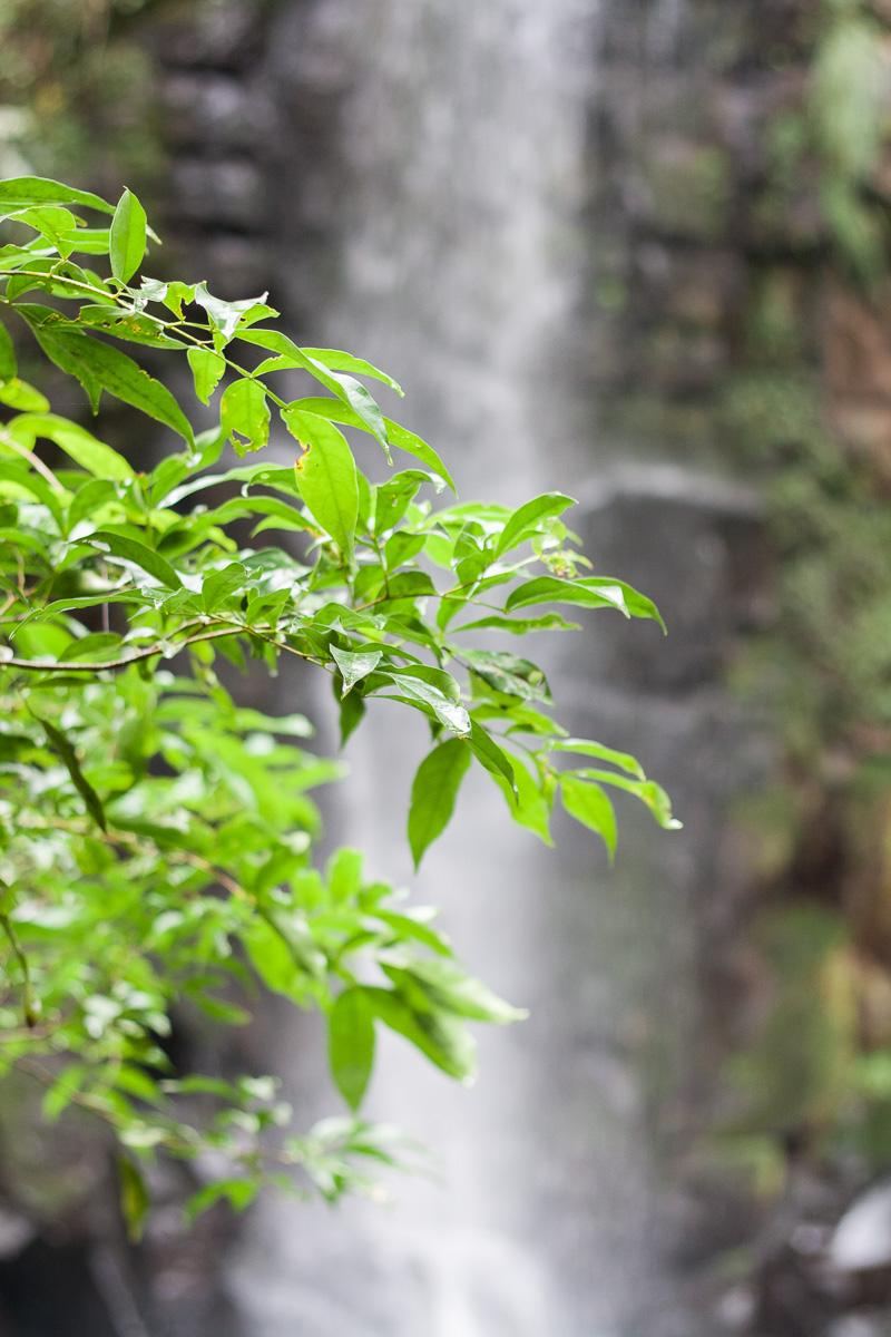 iguazu-falls2-7.jpg