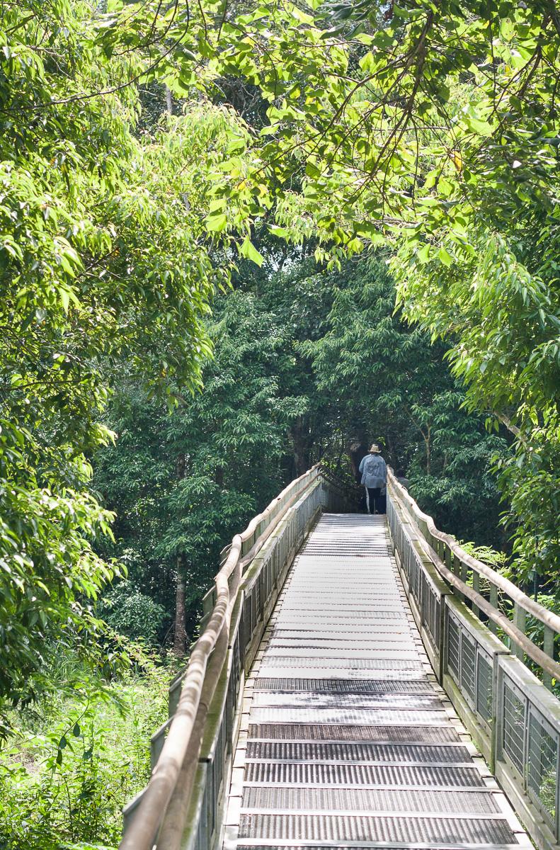 iguazu-falls-15.jpg