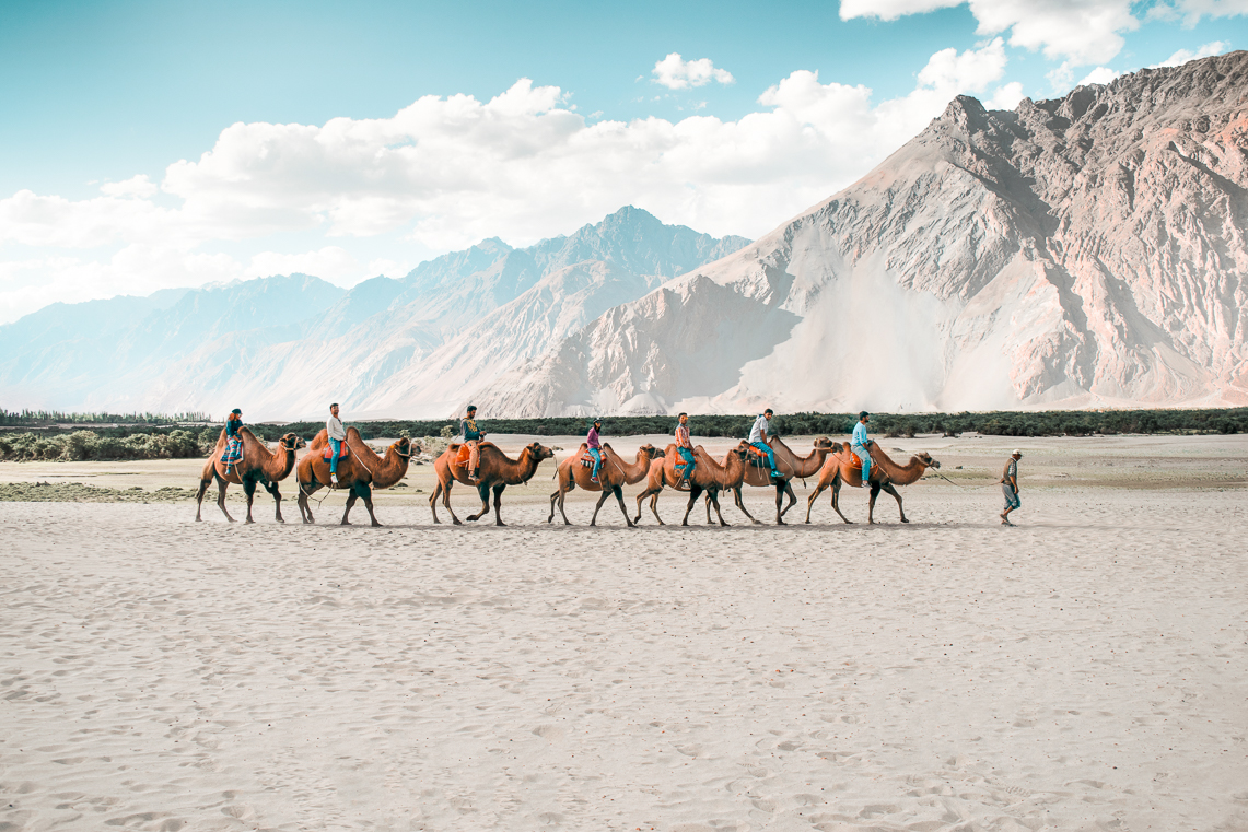 Nubra Valley - A high-altitude cold desert surrounded by glaciers, Nubra's uniquely moon-like landscape was once a heavily transited point on the Ancient Silk Road.