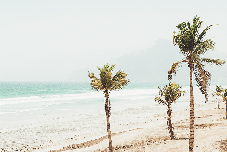 salalah - The green valleys and quiet bays of Salalah are an unbelievable contrast within Oman's desert terrain.