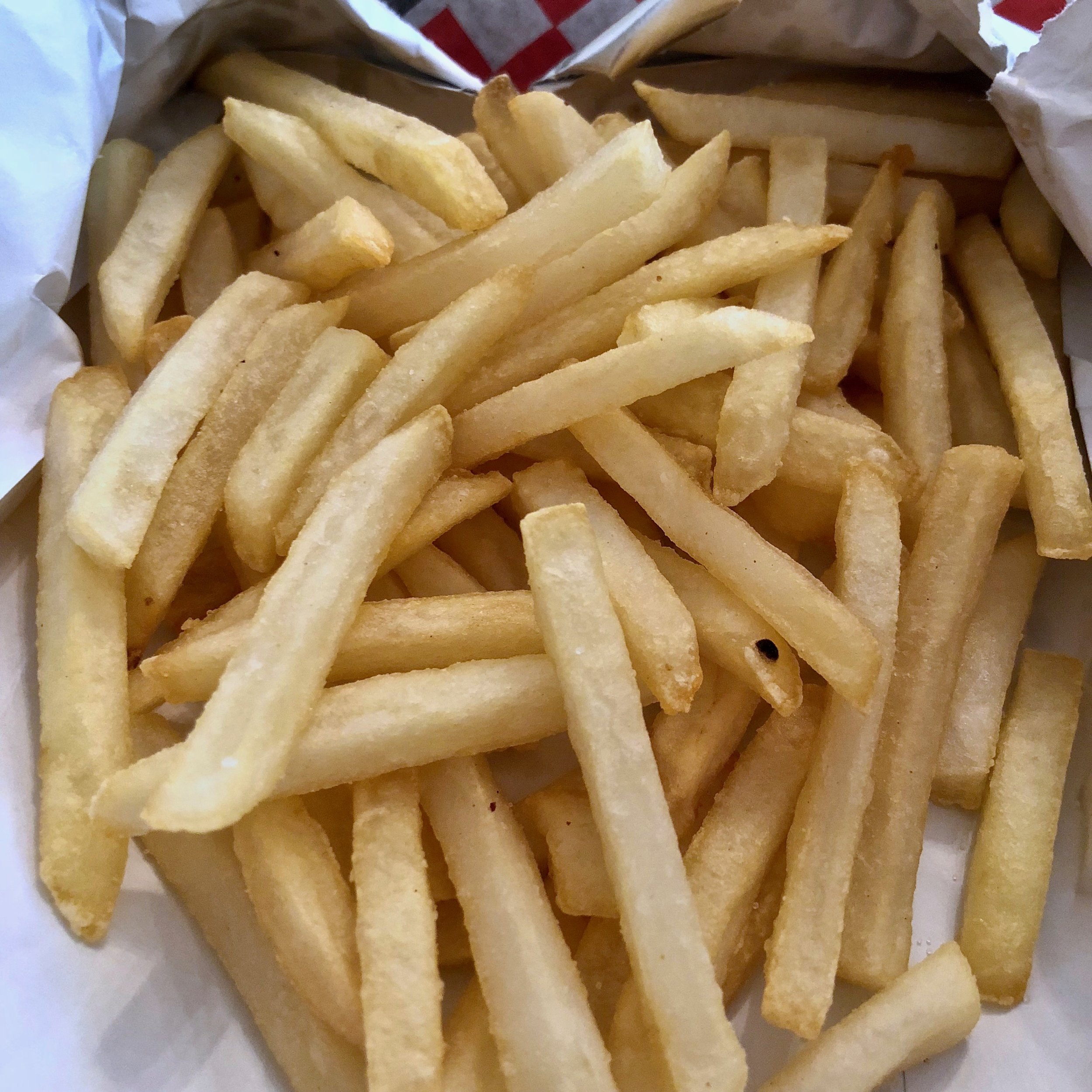 french fries $1.99