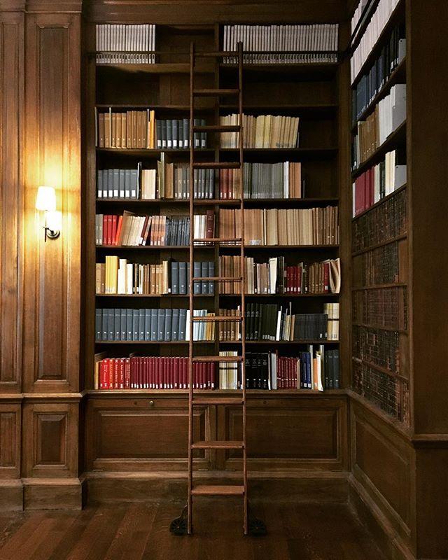 #libraryladderlove @librierge #libraryladder