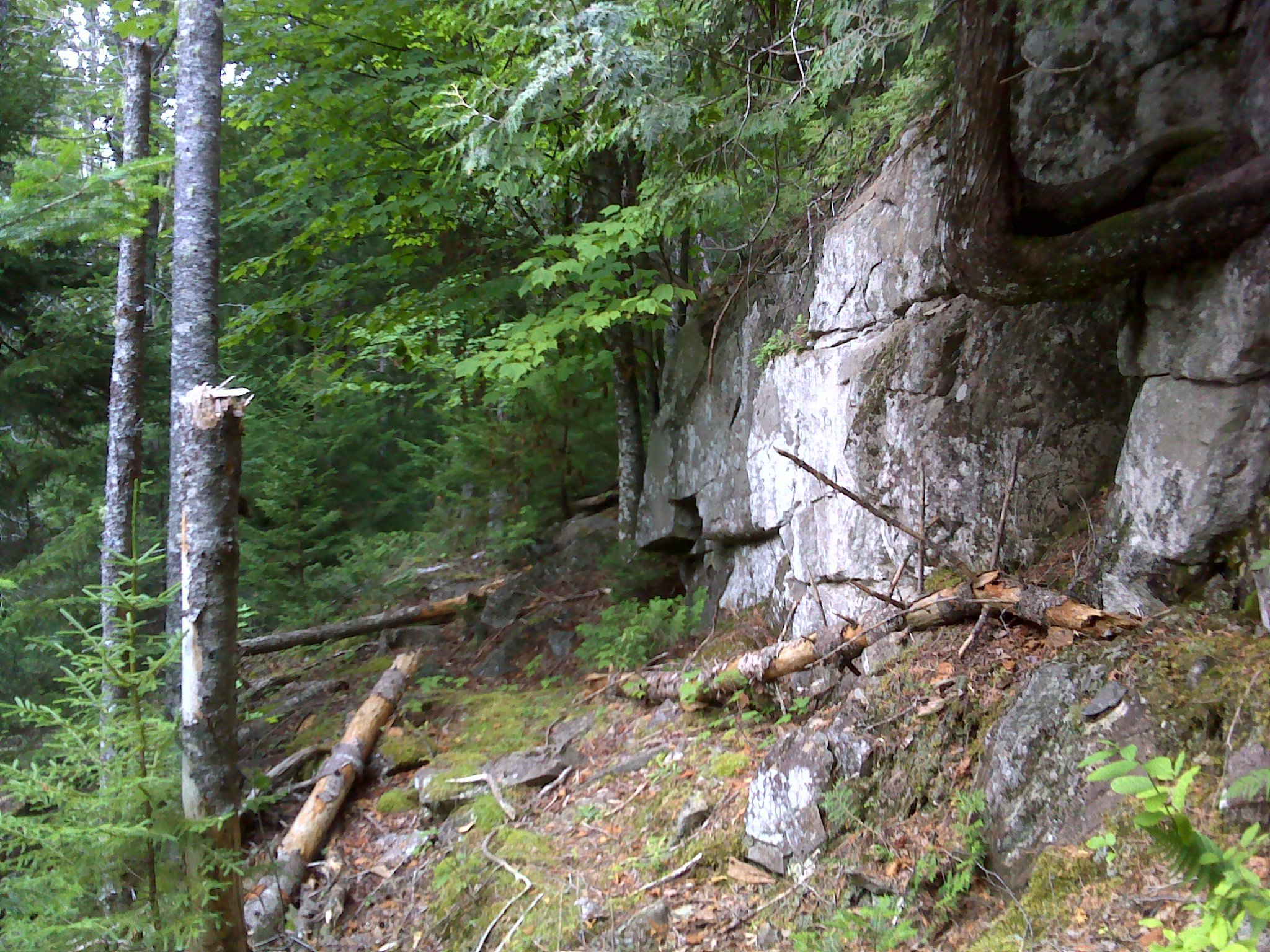 The rocky shoulder of Bell's Mountain