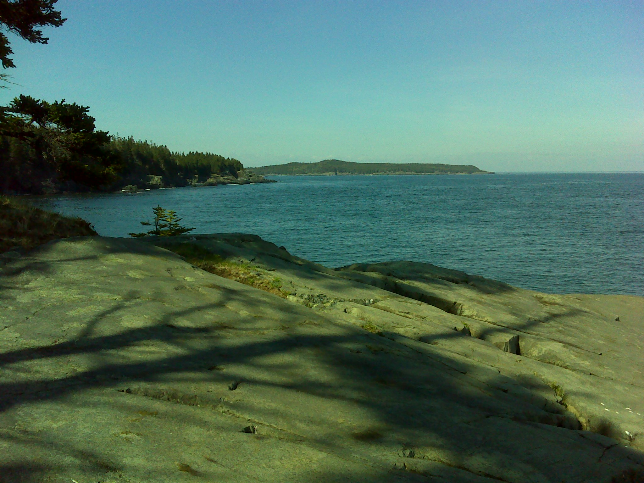 The view of Quoddy Head from the end of the Hamilton Cove Trail